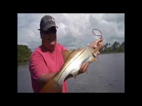 Lu Mendes engata mais um Robalo Flecha em Comandatuba-Bahia-Rei do Mangue team pro fisher..