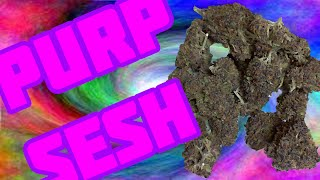Purp Sesh ...Smoking Dark Purple Weed GDP and aliens? by Sound Experiments