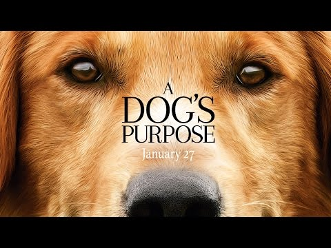 A Dog's Purpose (Trailer)