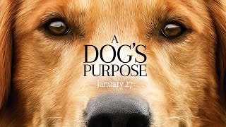 A Dogs Purpose  Official Trailer HD