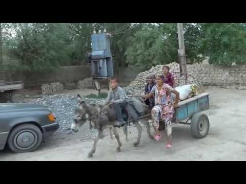 Поездка в Таджикистан -  видео-наброски П. Турсунова (видео)