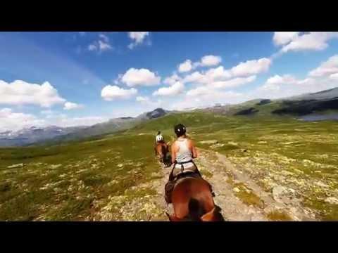 Horseback riding in the Norwegian mountains - Summary part1 (видео)
