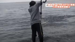 第16回シティーコムTV|佐賀県有明海 釣りじゃなくて網で大物GET!?