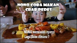 Video Nono Coba Makan Crab Pedes😱😱  mendadak nyanyi lagu Bobo dimana?🤭😴 MP3, 3GP, MP4, WEBM, AVI, FLV Oktober 2018