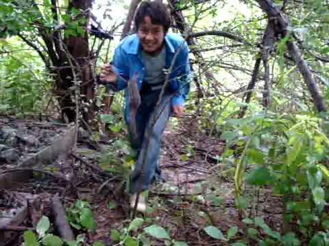Hmong Videos # nco txog zos qhov tsua  11