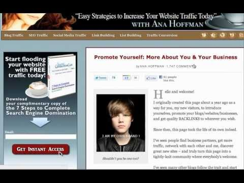 Watch 'Free Web Traffic Strategy Part 1 '