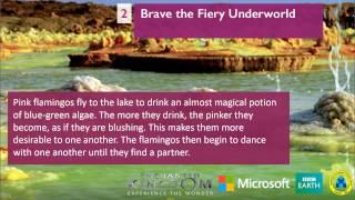 Nonton Bbc Earth Enchanted Kingdom   Fiery Underworld Film Subtitle Indonesia Streaming Movie Download