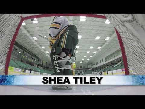 ECAC Hockey Goalie of the Year - Shea Tiley
