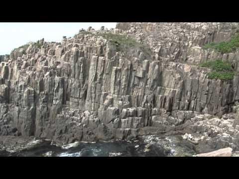 東尋坊の荒々しい断崖と雄島は必見!