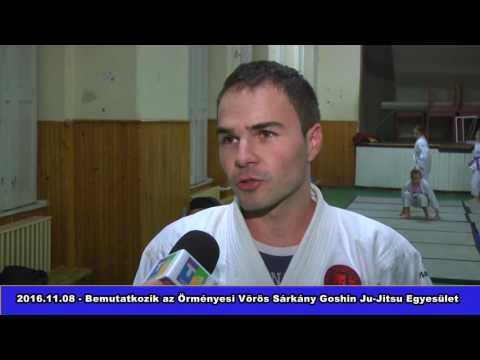 Bemutatkozik az Örményesi Vörös Sárkány Goshin Ju-Jitsu Egyesület