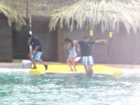 Los delfines en la feria de san luis potosi
