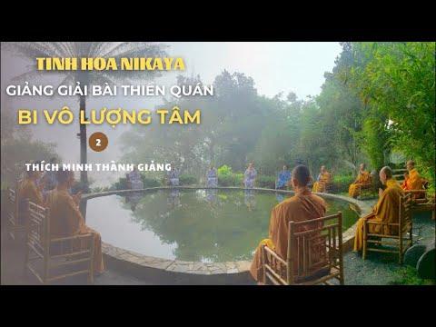 Tinh Hoa NIKAYA - Giảng Giải Bài Thiền Quán - Bi Vô Lượng Tâm 2