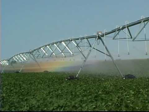 Mechanized Irrigation:  The Reinke Difference