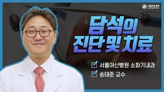 담석의 진단 및 치료 미리보기