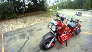 6. 2013 Custom Honda Ruckus Clone