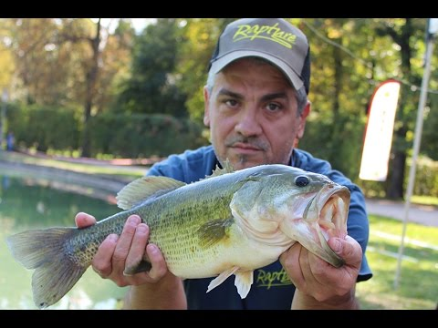 Italian Fishing TV - Rapture Lures - Finezze per il Bass
