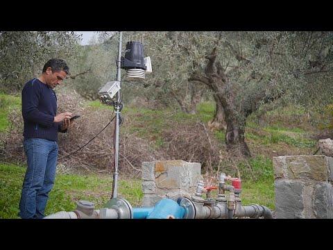 Drone και αισθητήρες βοηθούν αγρότες και κτηνοτρόφους να βελτιώσουν την παραγωγή τους…