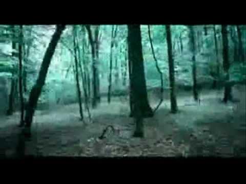 Tekst piosenki Paramore - Until Tomorrow po polsku