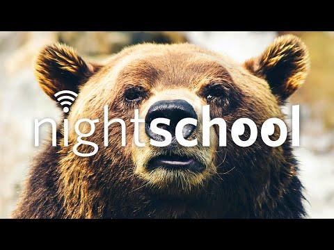 NightSchool: California Grizzlies