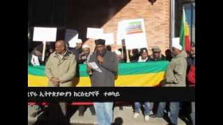 Ethiopian Muslims' Protest In Stockholm March 15, 2013.