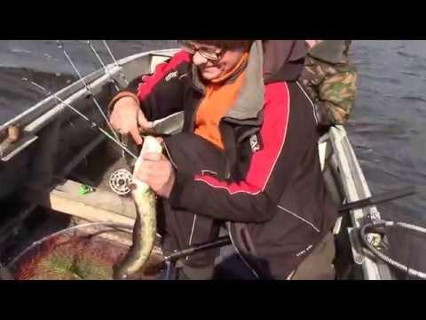 на что ловят рыбу на реке волхов