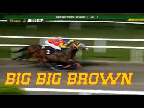 BIG BIG BROWN - PRCI Race 2, January 03, 2020