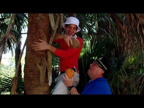 The Stupid Orange On Gilligan's Island