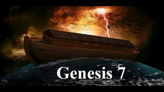 VIDEO BIBLE   GENESIS 7 ~ Noah's Ark & the Flood ~ Lit. TRANS. INT. ~RevMichelleHopkins