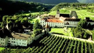 Culturonda® Wein
