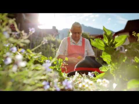 Dorf Tirol berührt