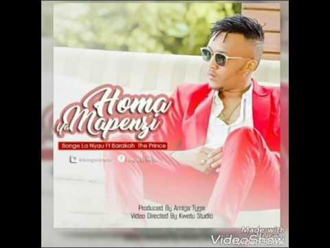 Bonge la nyau ft Barakah da prince-Homa ya mapenzi(new song)