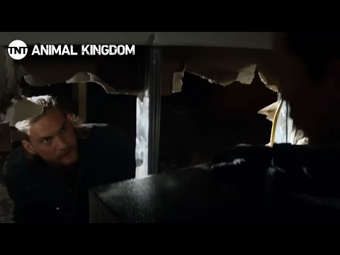 Animal Kingdom: Get the Safe! - Season 1, Ep. 3 [CLIP #1] | TNT