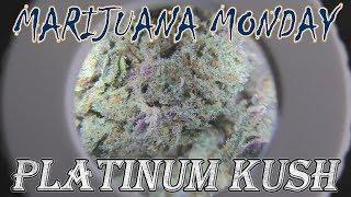 Platinum Kush Marijuana Monday by Urban Grower