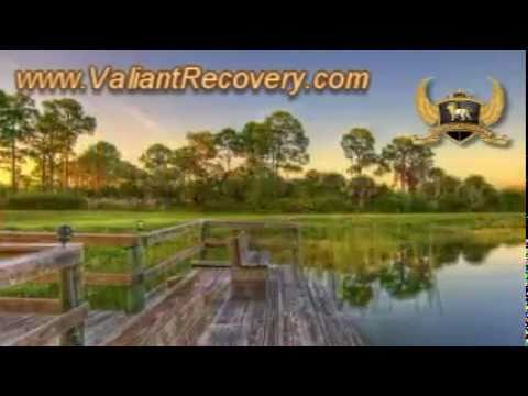 Help for Professionals struggling with drug & alcohol addiction, Venice, Florida, USA