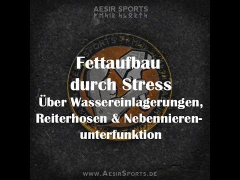 Zu viel Stress, zu viel Cortisol | Nebennierenunterfunktion?