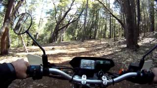 9. Riding the CRF230M on the trail