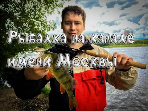 диалоги о рыбалке пехорка