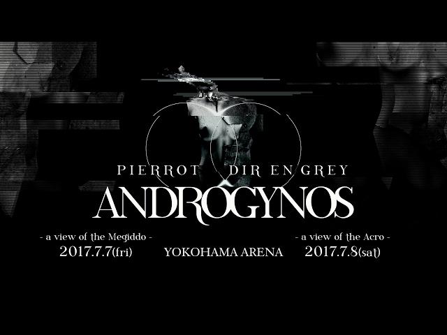 ANDROGYNOS 2017.2.12