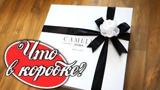 Распаковка покупок с магазинов Yoox и Camelia Roma.В Camelia Roma я заказывала сумку, а в yoox потрясающие лоферы от Grenson.------------------------Официальный магазин Camelia Roma https://goo.gl/rvoXs8Официальный магазин Grenson https://goo.gl/JnhpQ8