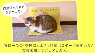 イエローハット 全国交通にゃん全運動PR動画