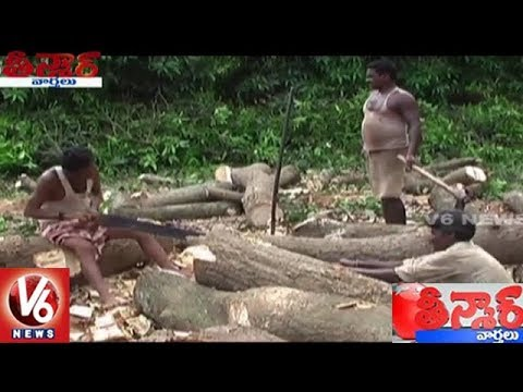 Telangana Govt Simplifies NoC Process For Tree-Felling | Teenmaar News