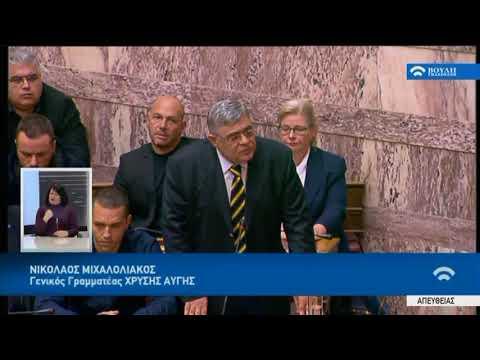 Ν.Μιχαλολιάκος(ΓΓ.ΧΑ)(Διανομή Κοινωνικού Μερίσματος)(20/11/2017)