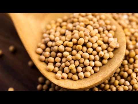 Senape: proprietà dei semi e calorie