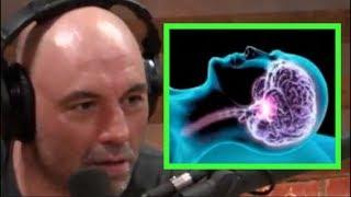 Video Joe Rogan - The Science of Sleep MP3, 3GP, MP4, WEBM, AVI, FLV September 2019