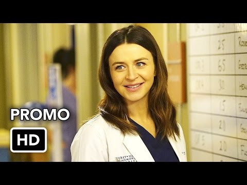 Grey's Anatomy 13.22 (Preview)