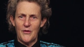 Temple Grandin Explains What it Feels Like to Be a Person with Autism