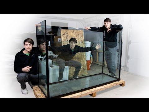 YouTube reptile video