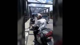 Video Penampakan Buaya Putih Di Jembatan MP3, 3GP, MP4, WEBM, AVI, FLV Desember 2018