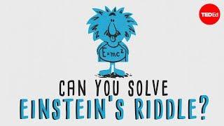 """Can you solve """"Einstein's Riddle""""? – Dan Van der Vieren"""
