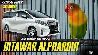 Video aaDUKI : DETIK-DETIK LB TAM TAM Ditawar ALPHARD!!! MP3, 3GP, MP4, WEBM, AVI, FLV Juni 2018